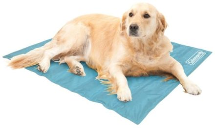 Coleman Cooling Pad for Dogs