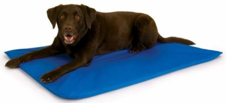 K&H Pet Products Cooling Pad for Dogs