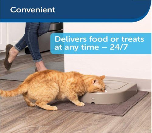 1.PetSafe 5 Meal Automatic Dog and Cat Feeder, Dispenses Dog Food or Cat Food, Digital Clock