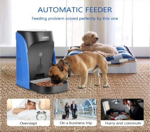 14.WOpet Automatic Pet Feeder Stainless Steel Bowl with Portion Control,Dog and Cat Feeder with Voice Recorder & Speaker-Timer Programmer up to 4 Meals a