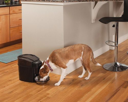 2.PetSafe Healthy Pet Simply Feed Automatic Pet Feeder, Dispenses Dog Food or Cat Food, Digital Clock