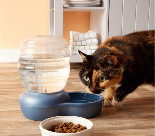 2.Petmate Replendish Gravity Waterer with Microban Cat and Dog Water Dispenser 4 Sizes