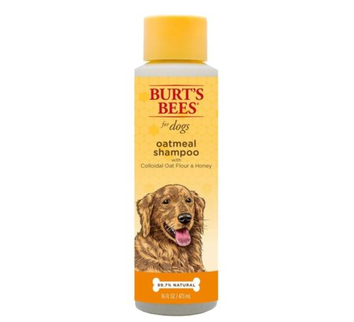 6.Burt's Bees Natural Oatmeal Shampoo for Dogs Made with Colloidal Oat Flour and Honey Best Oatmeal Dog Shampoo, 16 Ounces- Natural Conditioners and Shampoos