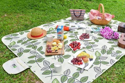 7. Large Waterproof Outdoor Picnic Blanket, Sandproof Picnic Blanket for Camping or Hiking by MIU COLOR