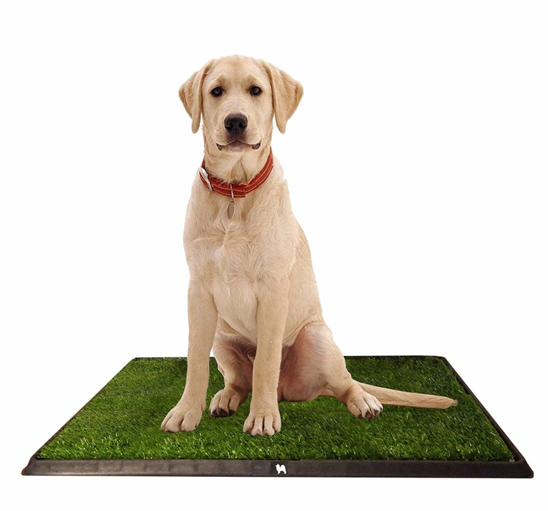 Puppy Potty Grass Toilet Trainer tray for Dogs and Puppies Large 20 x 25 Inch. Training Grass Pee Pad for Indoor, Outdoor Use, Porches, Apartments, and Houses Grass Turf Mat