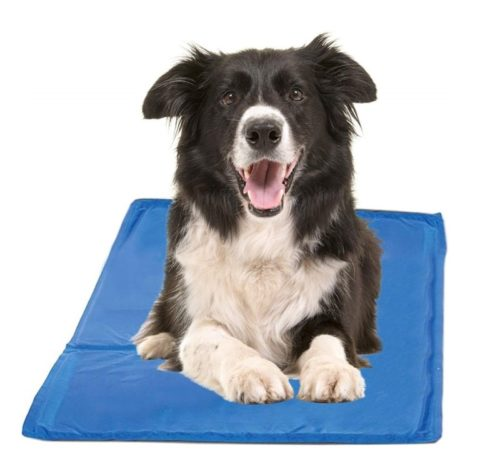 1.Chillz Cooling Mat For Dogs - Pressure Activated Gel Dog Cooling Mat - No Need to Freeze Or Refrigerate This Cool Pet Pad -