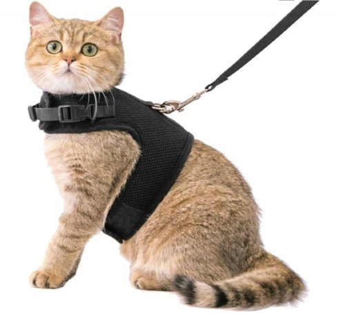 10.CHERPET Cat Harness and Leash - Escape Proof Safety Adjustable Jackets Harnesses 1.5m Strap Easy for Walking