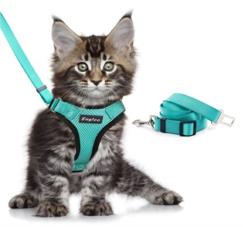 11.Eagloo Cat Harness and Leash Set for Walking Escape Proof with 2-in-1 Leash and Car Seat Belt Adjustable Harness for Cats Soft Mesh