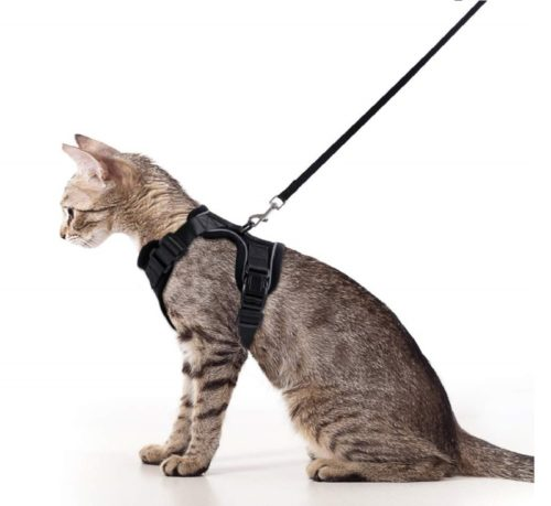 13.Rabbitgoo Cat Harness and Leash Set for Walking, Escape Proof with 59 Inches Leash - Adjustable Soft Vest Harnesses for Small Medium Cats, Cat Leash