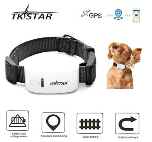 13.TKSTAR Mini GPS Tracker for Pet Dog Cat GPS Collar Global Real-time Locator Remote Voice Monitor Free Online Tracking Platform TK909