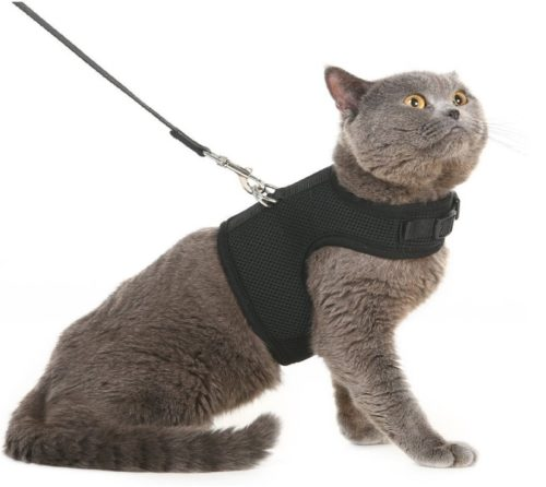 2.Escape Proof Cat Harness with Leash - Adjustable Soft Mesh - Best for Walking