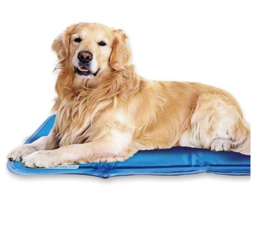 2.The Green Pet Shop Dog Cooling Mat - Pressure-Activated Gel Cooling Mat For Dogs - This Pet Cooling Mat Keeps Dogs and Cats Comfortable All Summer