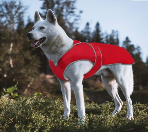 MIGOHI Reflective Waterproof Windproof Dog Coat Cold Weather Warm Dog Jacket Reversible Stormguard Winter Dog Vest for Small Medium Large Dogs