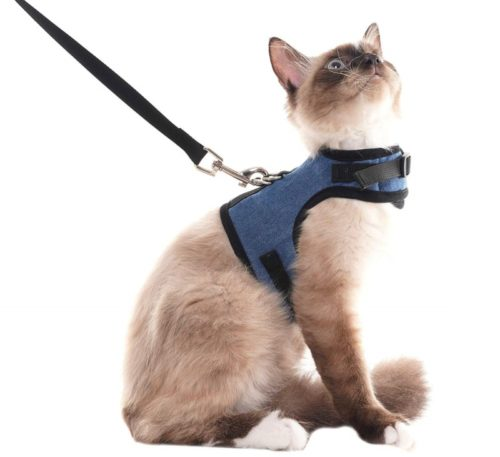 7.SCENEREAL Escape Proof Cat Harness and Leash - Adjustable Soft Mesh Vest for Rabbits Puppy Kittens