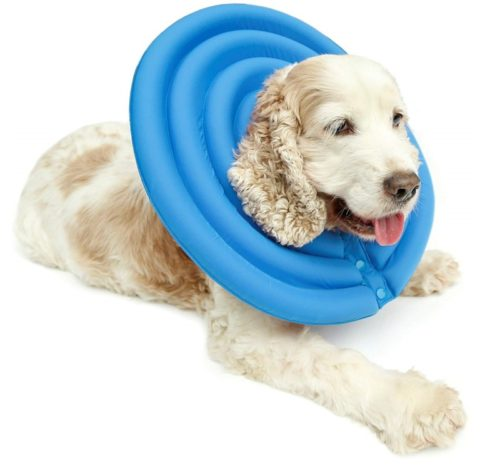 8.UsefulThingy Dog Recovery Collar - Soft Comfy Cone E-Collar After Surgery, Anti-BiteLick - for Cats Too, Quicker Healing