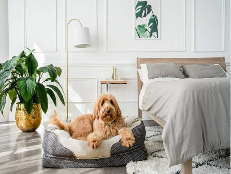 3.BarksBar Gray Orthopedic Dog Bed - Snuggly Sleeper - with Grooved Orthopedic Foam, Extra Comfy Cotton-Padded Rim Cushion and Nonslip Bottom
