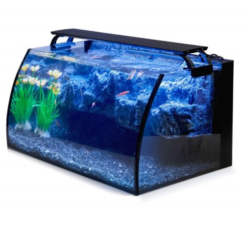 9.Hygger Horizon 8 Gallon LED Glass Aquarium Kit for Starters with 7W Power Filter Pump, 18W Colored led Light, Wide View Curved