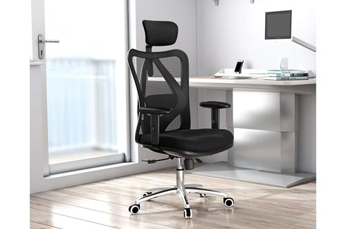 2. Sihoo Ergonomics - Computer Chair - Desk Chair - Headrests Chair Backrest and Armrest's Mesh Chair