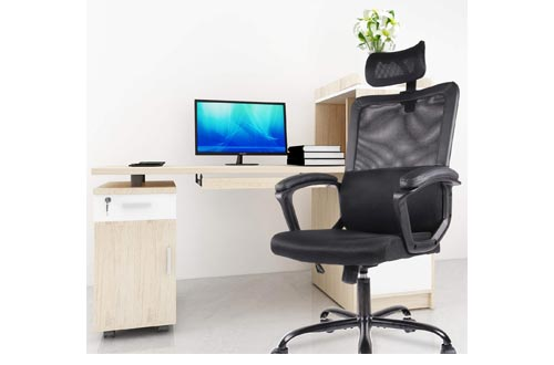 5. Smugdesk Ergonomic Office Chair - Adjustable Headrest Mesh Office Chair - Office Desk Chair - Computer Task Chair