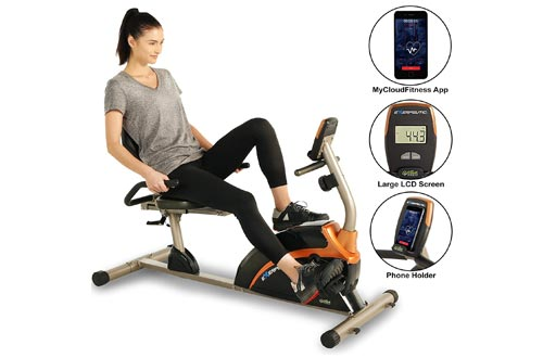 7. EXERPEUTIC 900XL 300 lbs. Weight Capacity Recumbent Exercise Bike with Pulse