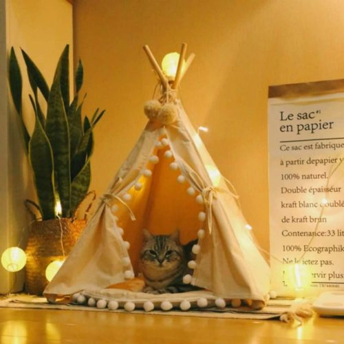 9. Little Dove Comfortable Pet Tent Fold Away with Cushion, Teepee Tent with Pad