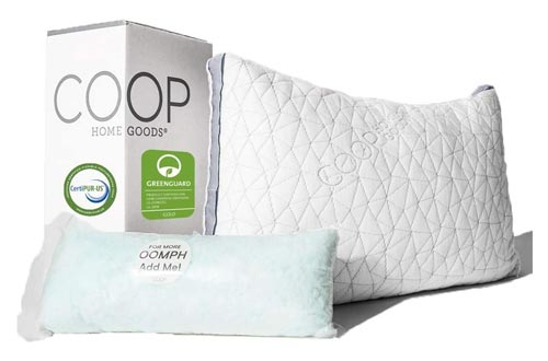 10. Coop Home Goods Hypoallergenic Pillow