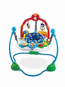 3. Fisher-Price Jumperoo Laugh & Learn