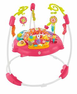 5. Fisher-Price Jumperoo Pink Petals