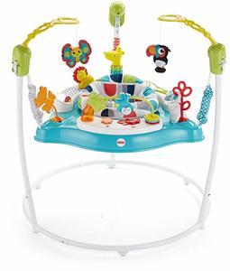 9. Fisher-Price Color Climbers Jumperoo