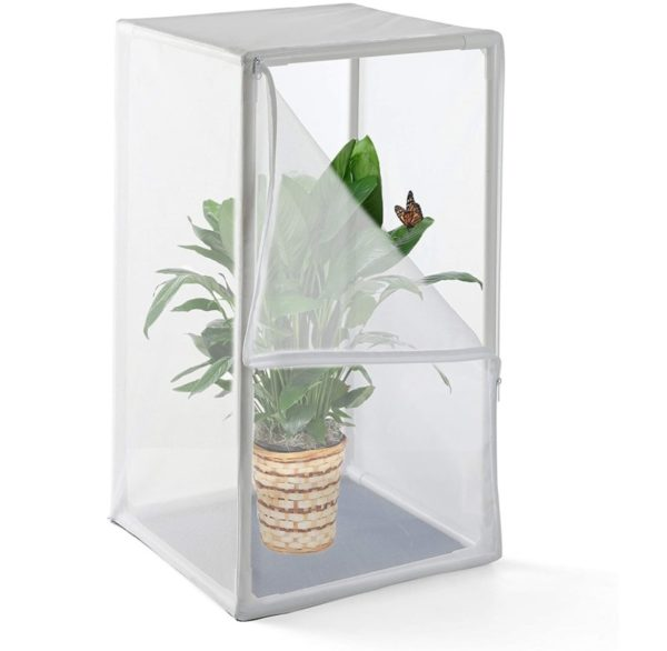 ATOLL Professional Version Butterfly Habitat Cage