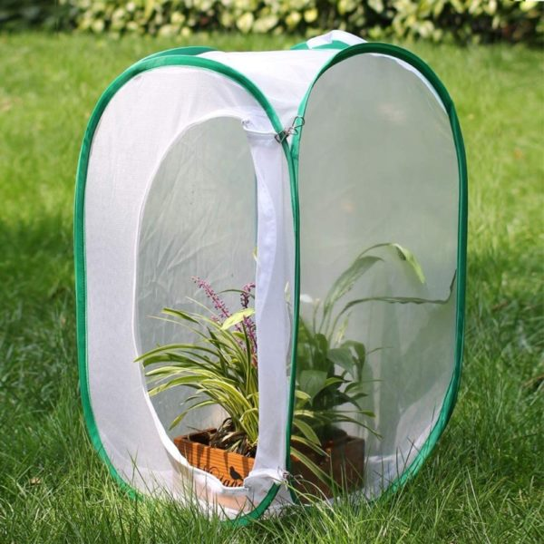 Collectfun Tall Large Monarch Butterfly Cage