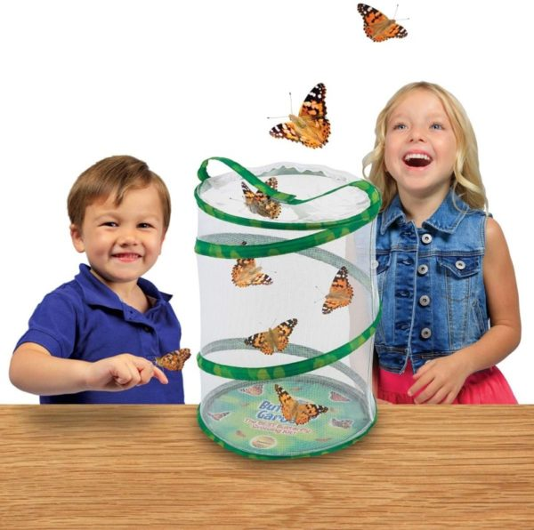 Insect Lore Butterfly Cage