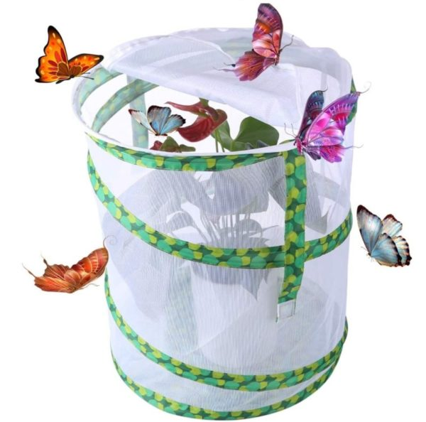 Yamix Mesh Butterfly Cage